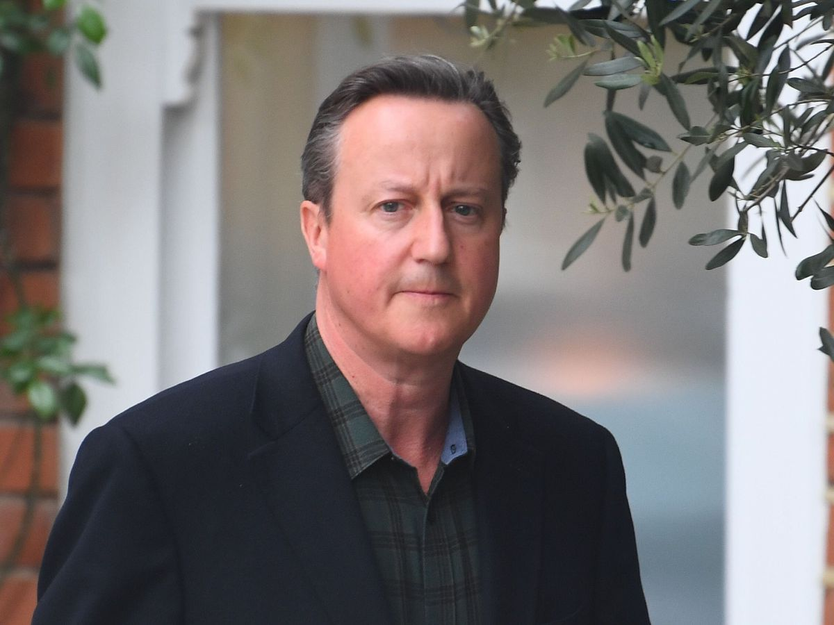 Former prime minister David Cameron did not have to declare his lobbying for Greensill because he was an employee