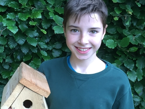 Jake's homemade bird box impresses in sustainability competition