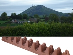 Toblerone row: Chocolate bar not distinctive enough to trademark, says Poundland