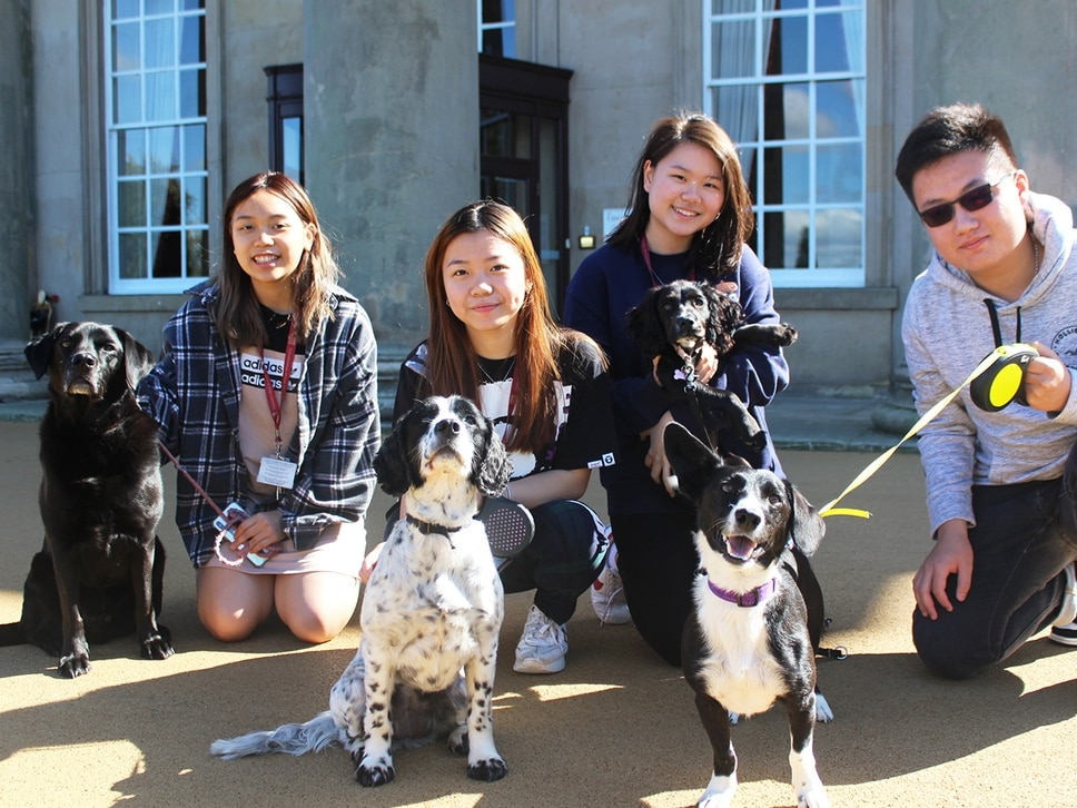 Students hope Shropshire charity dog show will be paw-fect