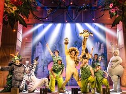 Madagascar the Musical, New Alexandra Theatre, Birmingham - review with pictures