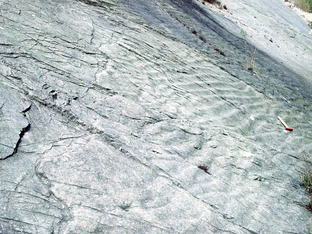 Shore thing – these rock ripples are evidence of an ancient seashore near Wellington.