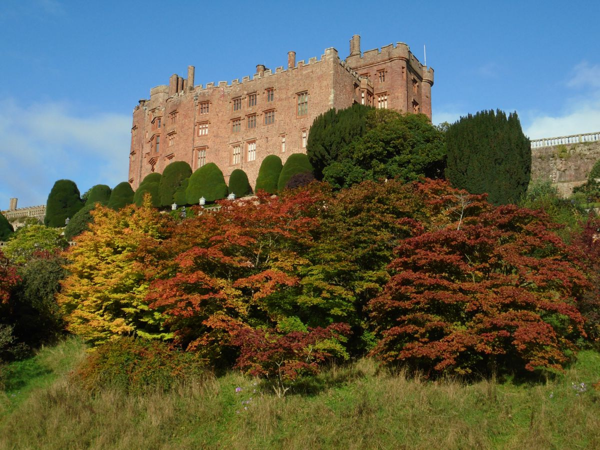 Powis Castle's grounds will be open again from Monday