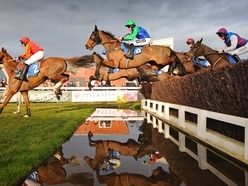 Ludlow Racecourse fined £3,500 over state of stables