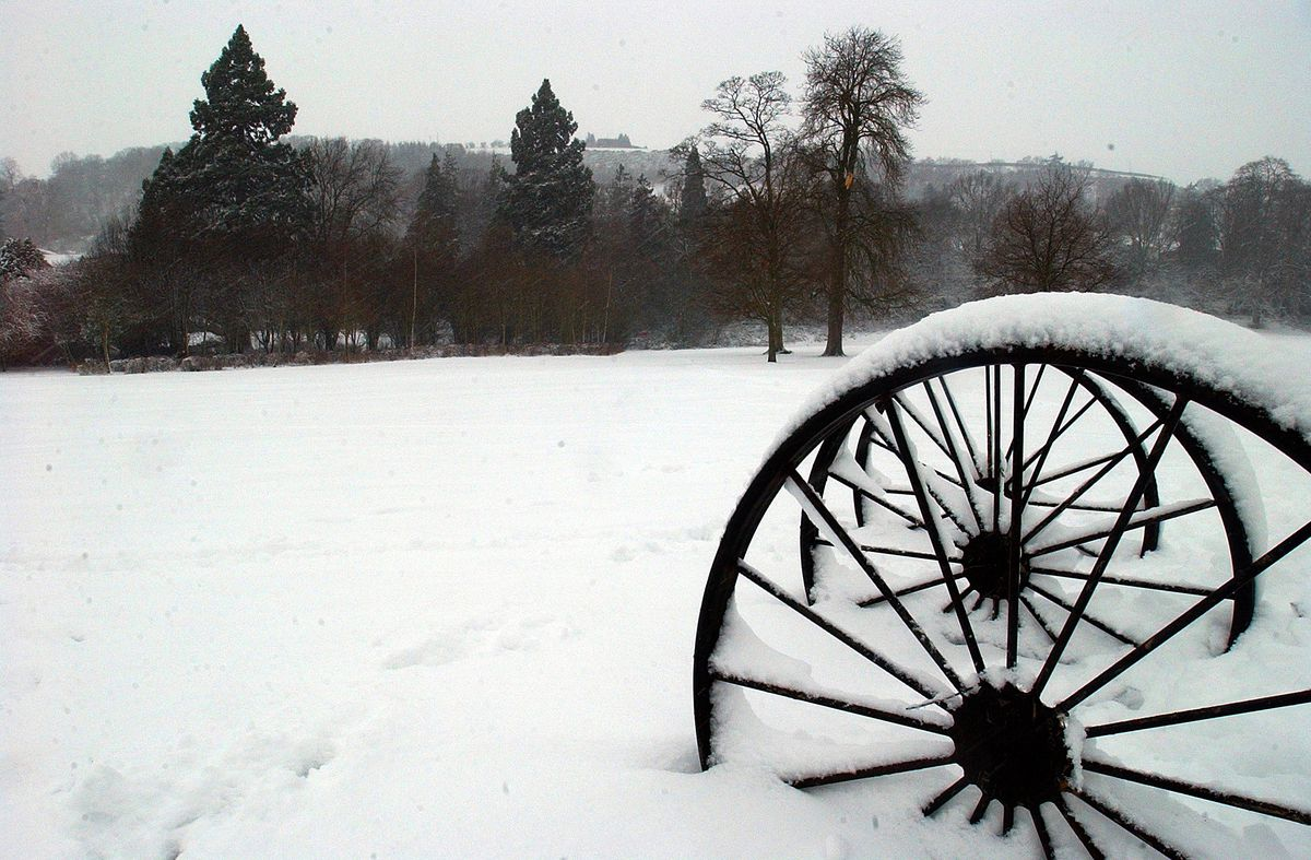 Dolerw Park in the snow