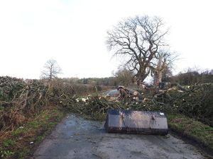 A tree has fallen in Rudge Road, Pattingham - picture: @BridgnorthCops