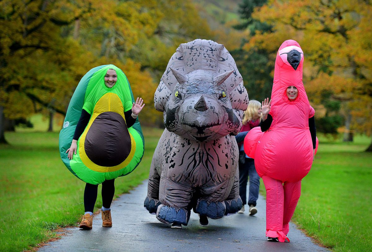 Councillor Julian Raymond-Sandy, one of the organisers, in the large grey dinosaur suit, was joined by Carys Storer Jones and Ffion Wright-Evans