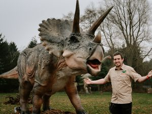 LAST COPYRIGHT SHROPSHIRE STAR JAMIE RICKETTS 03/03/2021 - Hoo Farm Animal Kingdom are changing their name to Hoo Zoo and Dinosaur World! Partner Will Dorrell pictured here with one of the many new Dinosaurs that will be on offer to visitors to experience!.