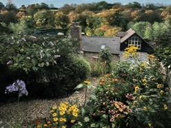 Gardens opening in Ludlow