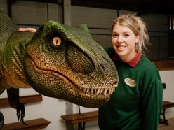 Shropshire farm attraction welcomes back visitors