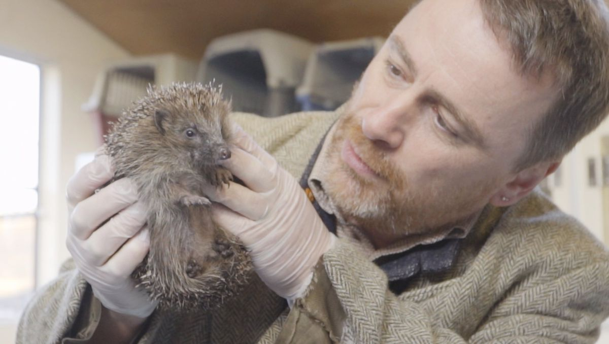 Hugh Warwick and a hedgehog