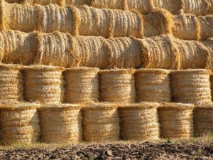 Farmers are being warned about uninsured haystacks