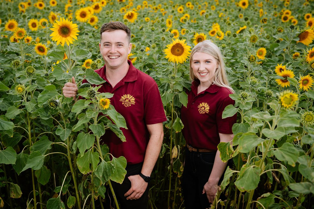 Little Wytheford Farm near Shawbury has for the second year opened their gates to their Sunflower Farm after the huge success from last year. They had planted over three million sunflower seeds. In Picture: Amelia Davies and Simon Davies