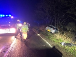 Car veers off road and hits tree near Ellesmere