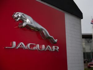 Jaguar stock
