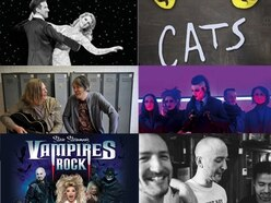 Wolverhampton Literature Festival, Anton and Erin, Cats, Motionless In White and more: What's on this weekend in the Midlands and Shropshire