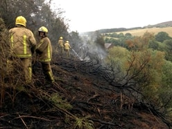 Shropshire beauty spot hit by woodland blaze - with pictures