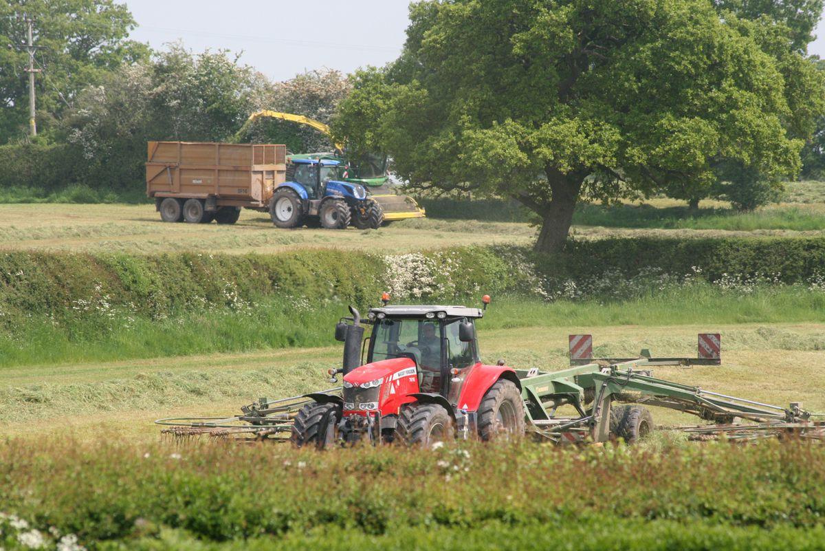 Getting the silage cut near Ellesmere