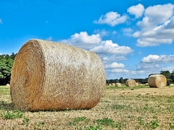 Fire risk warning to Shropshire farmers over heatwave