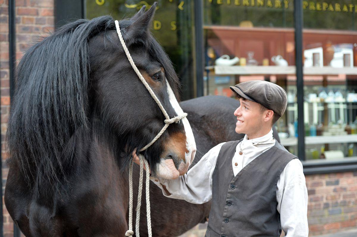 Kieran Smith admires George the horse