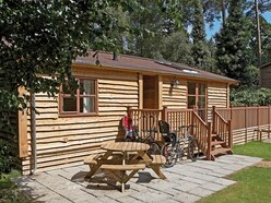 Sandy Balls review: Home comforts in the splendour of the New Forest