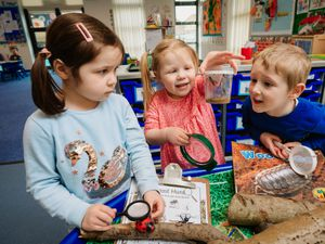 Youngsters Lydia Dean, aged 4, Freya Woodfine, 3, and Sebastian Fisher, also 4, are pictured learning all about mini beasts