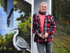 Animal magic! Fran transforms Telford bus shelter with wildlife mural