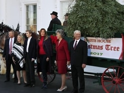 Christmas Tree arrives at White House for first Yuletide of Trump presidency