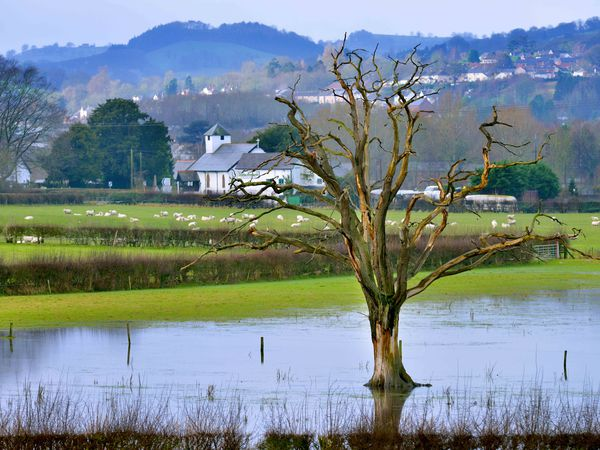 Flooded land alongside the road from Welshpool to Shrewsbury last year