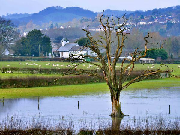 Flooded land alongside the road from Welshpool to Shrewsbury last year