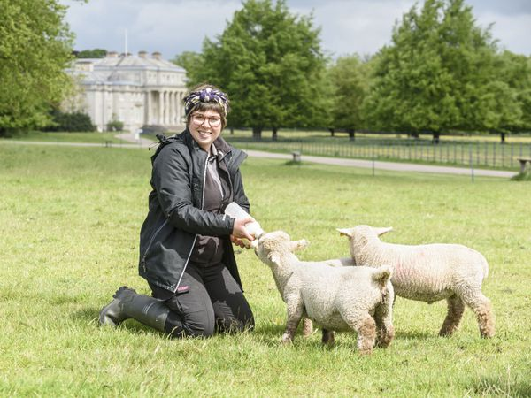 Kirsty Down, Livestock manager at National TrustÕs Shugborough Hall with some of the new lambs.