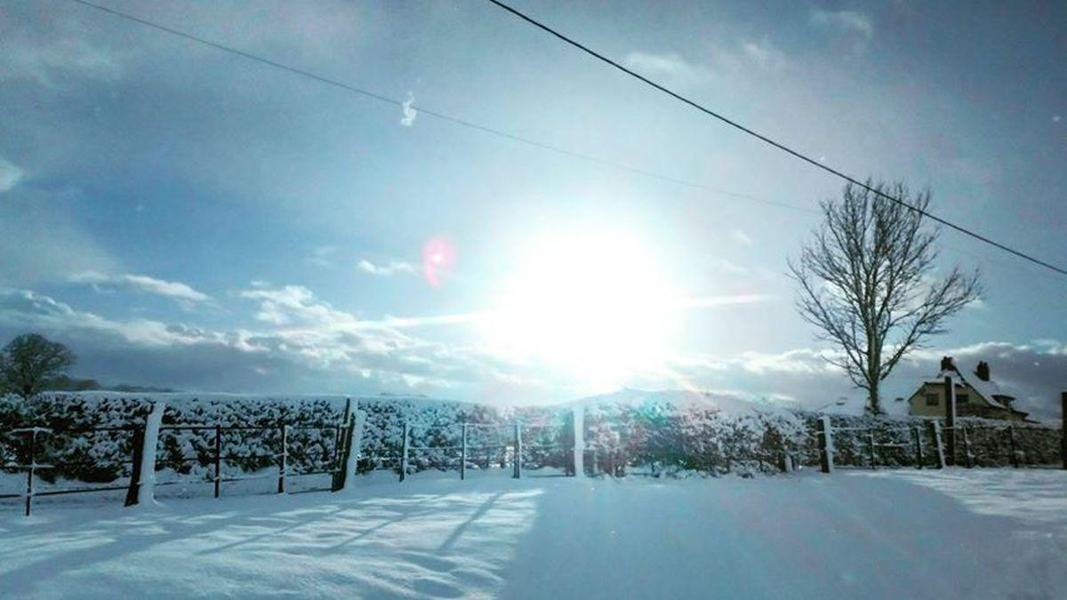 Snow in Baschurch. Photo: Molly Twigg.