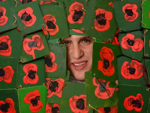Charlie Teague, from Craven Arms, has designed fantastic poppy artwork