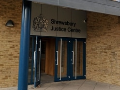 Suspended sentence for thief who wanted help