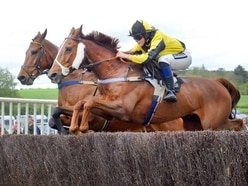 GALLERY: Eyton-on-Severn Point to Point