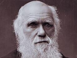 We must secure Charles Darwin's legacy – Shrewsbury's future lies in its past
