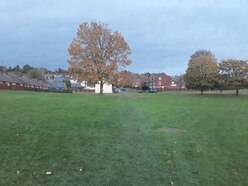 Green space saved from development to be granted permanent protection