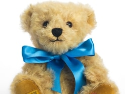 Bevan the bear to bring comfort and cash amid Covid-19