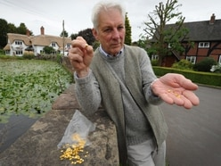 Ouch! Cyclists a prickly subject in idyllic Shropshire village - with video