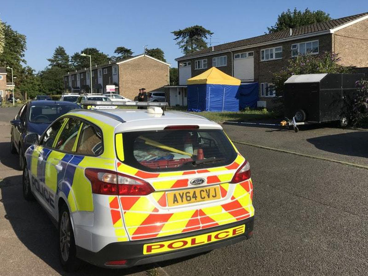 The scene in Normanhurst Close, Lowestoft, where a man has been arrested on suspicion of the commission, preparation or instigation of acts of terrorism