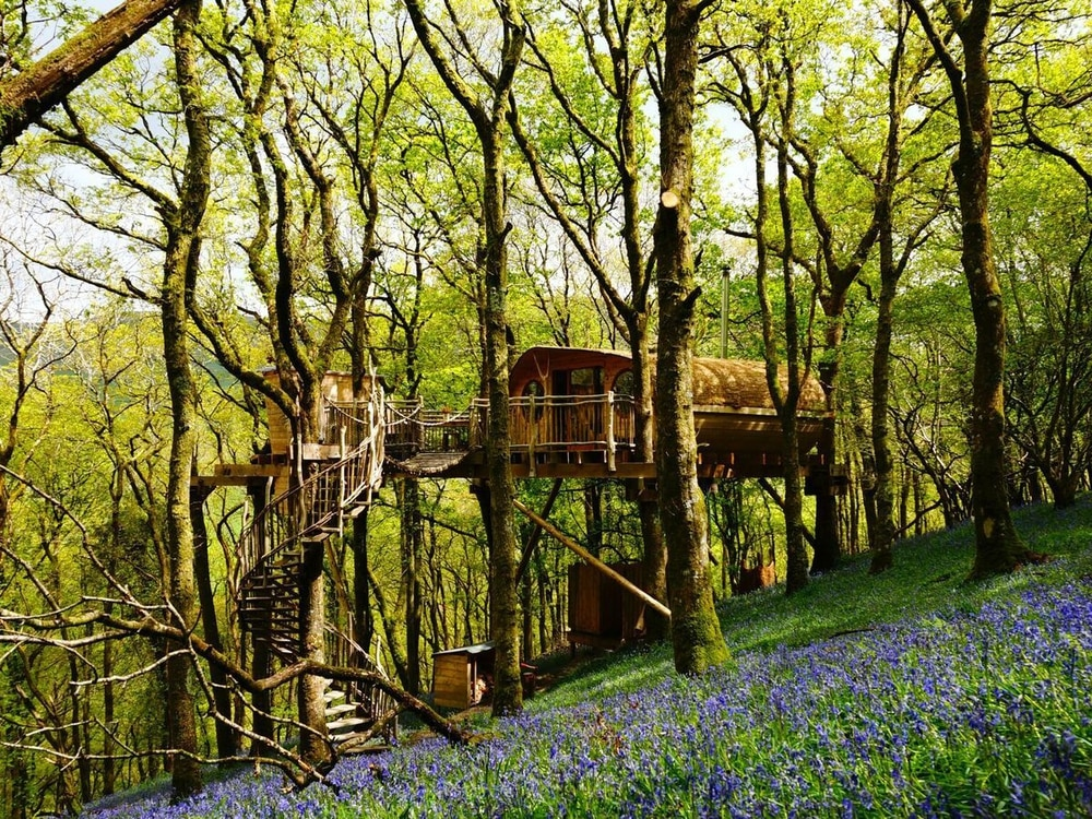 Climbing high - Treehouses scale the heights with Lonely Planet accolade