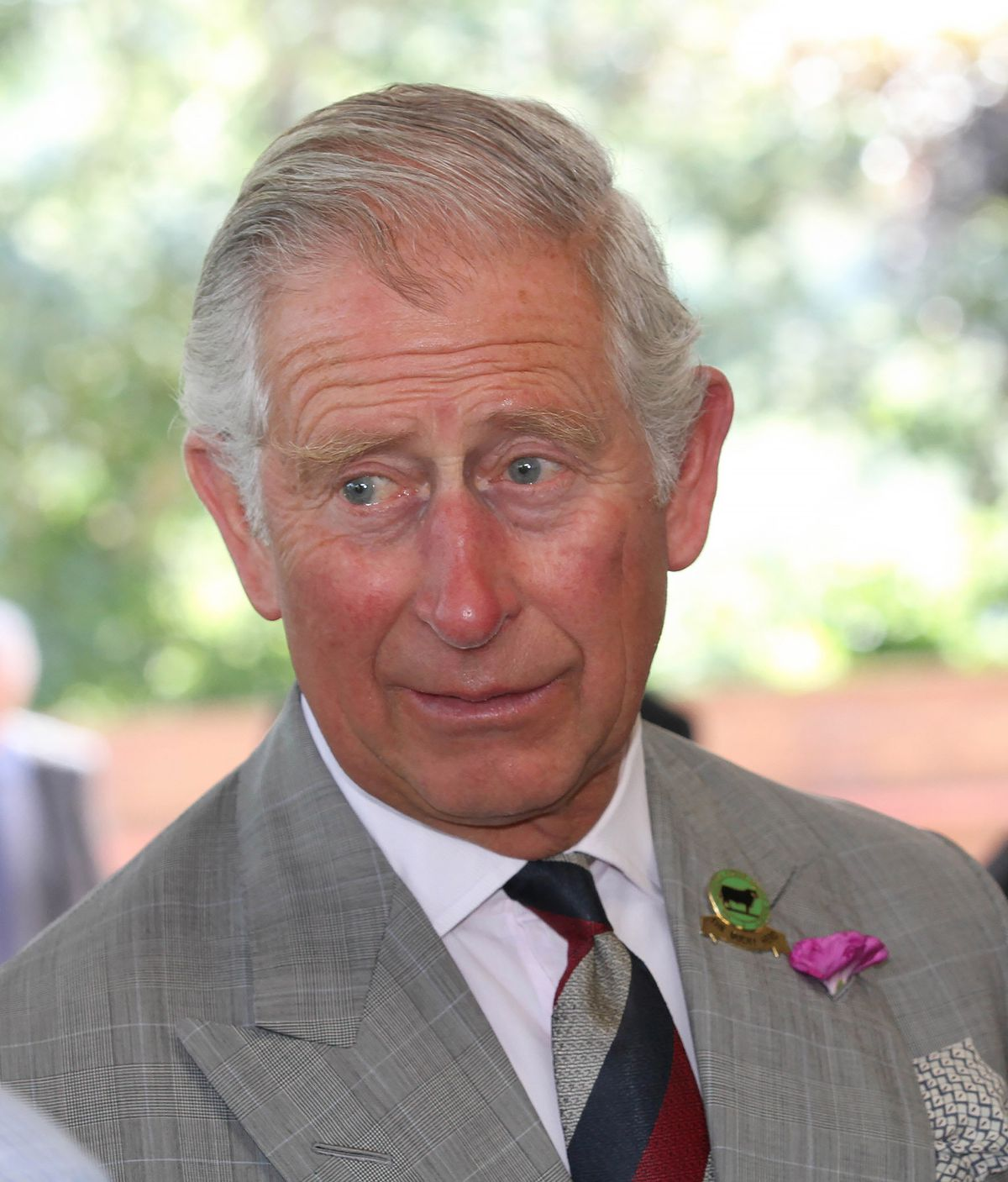 Prince Charles. picture by Phil Blagg.
