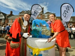 Bridgnorth's Catch Me Who Can art trail launches