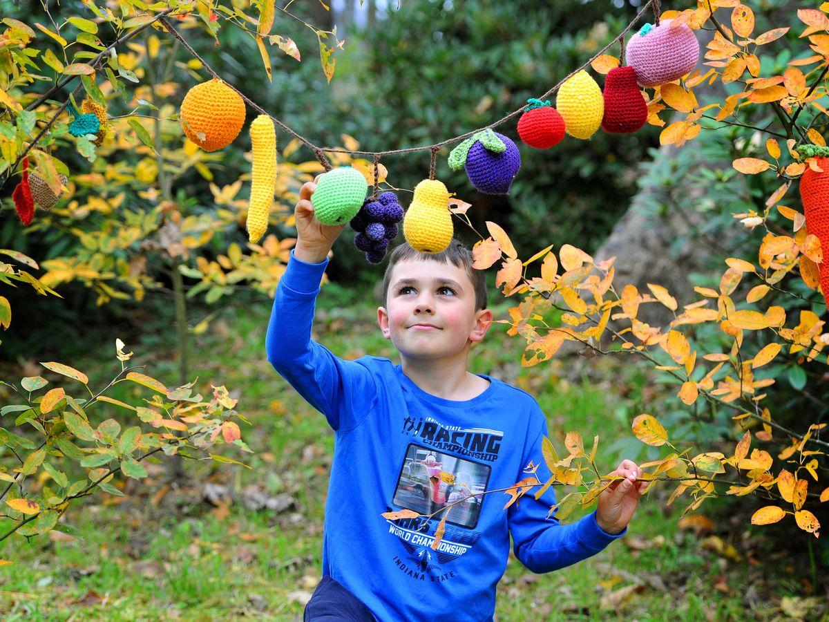 Keelan Jones, eight, is among those enjoying the Woollen Woods