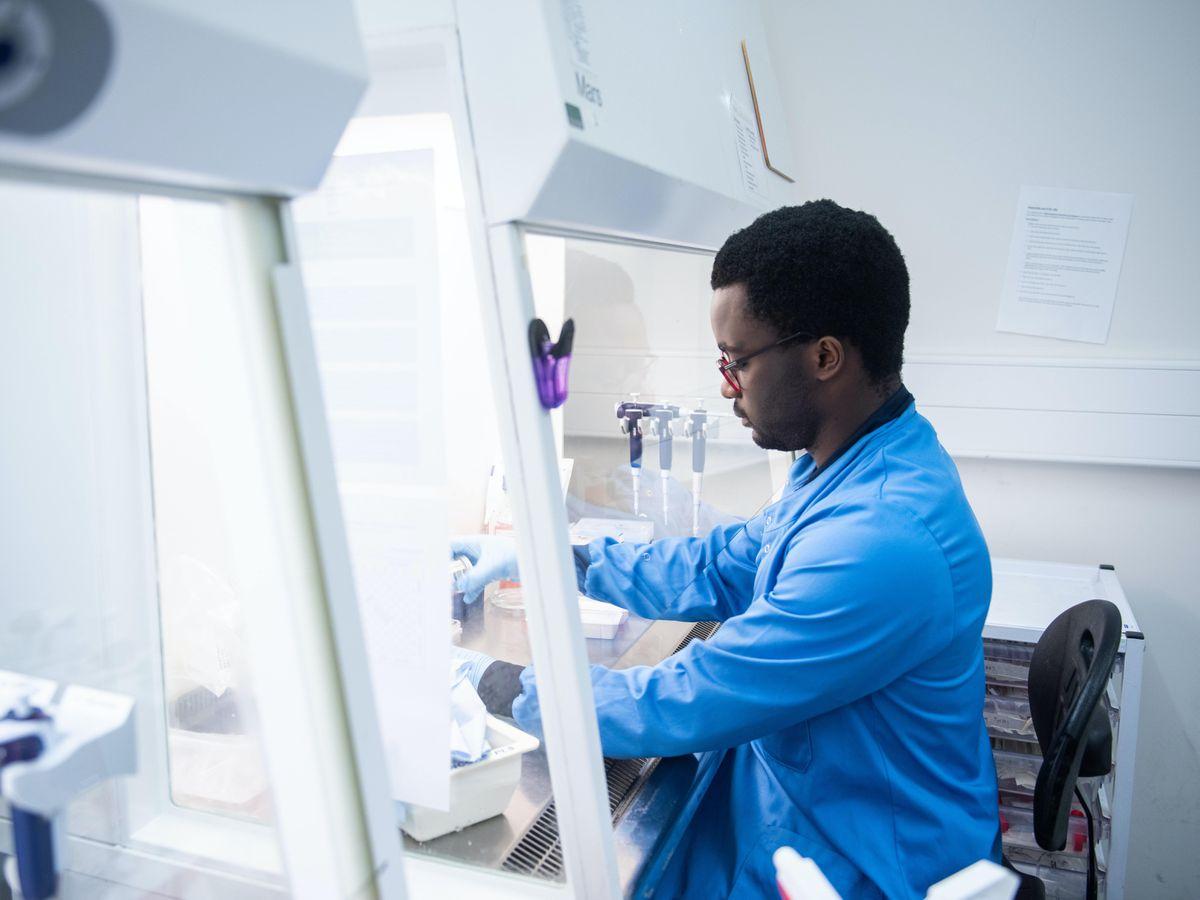 A researcher in a laboratory
