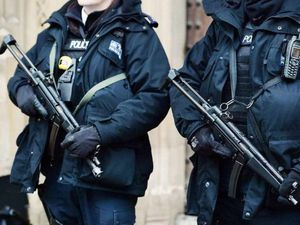 Armed police were called to the area