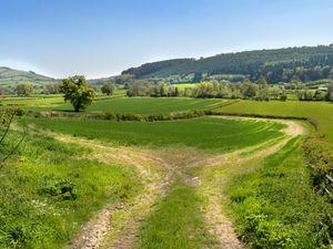 Fields near Clun bask in the Spring sun