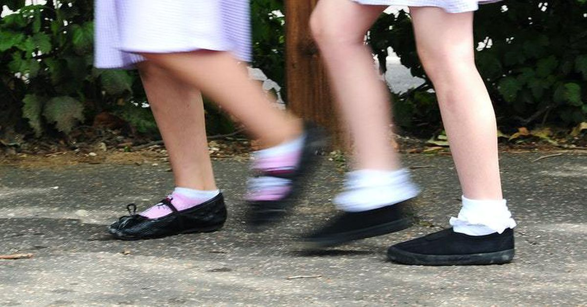 The council approved plans for speed limits outside schools