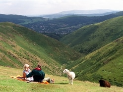 'Green brigade' blamed for making the Long Mynd 'barren'