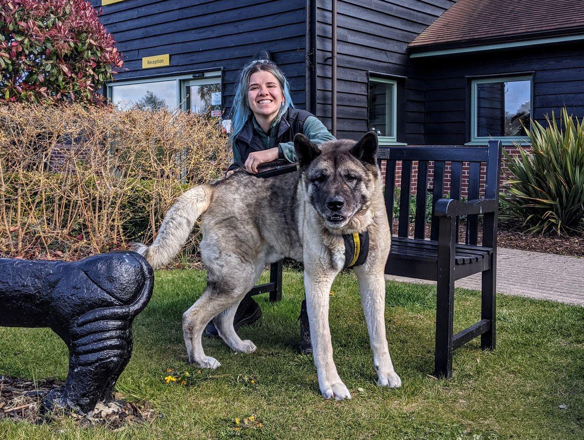 Stephanie Parkes of Dogs Trust Shrewsbury with Paddy